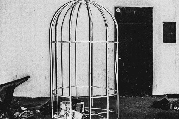 bird cage black and white photography with high contrast and flash by francesco merlini