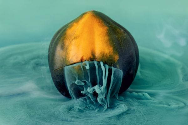 Color Photography by Maciek Jasik - Acorn squash, also called pepper squash or Des Moines squash, is a winter squash with distinctive longitudinal ridges on its exterior and sweet, yellow-orange flesh inside.
