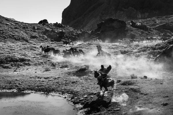 black and white photo of cowboys riding horses in chile