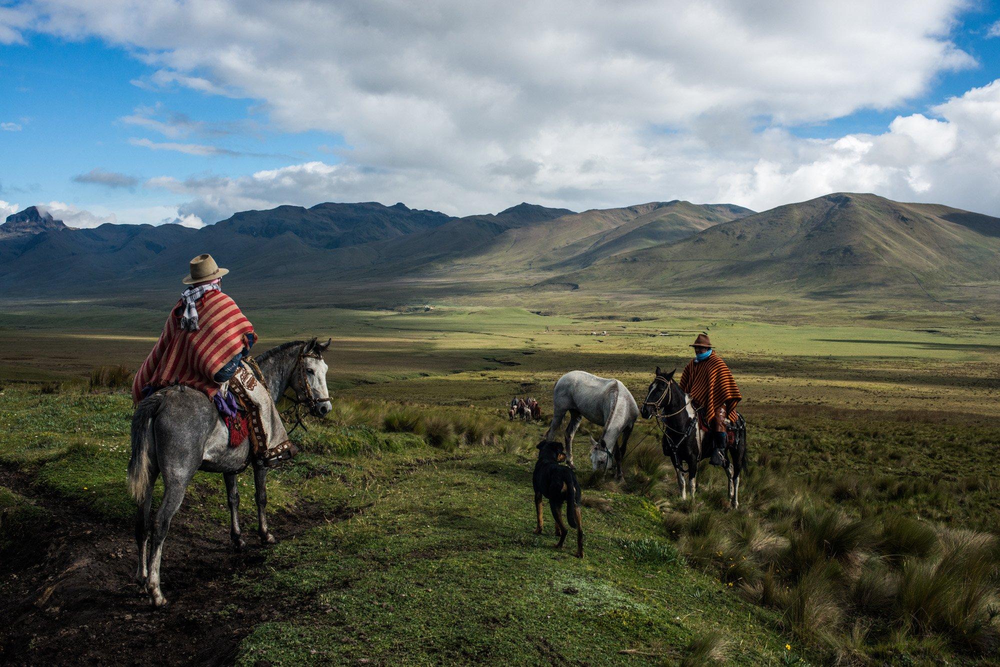 color photograph of cowboys riding horses