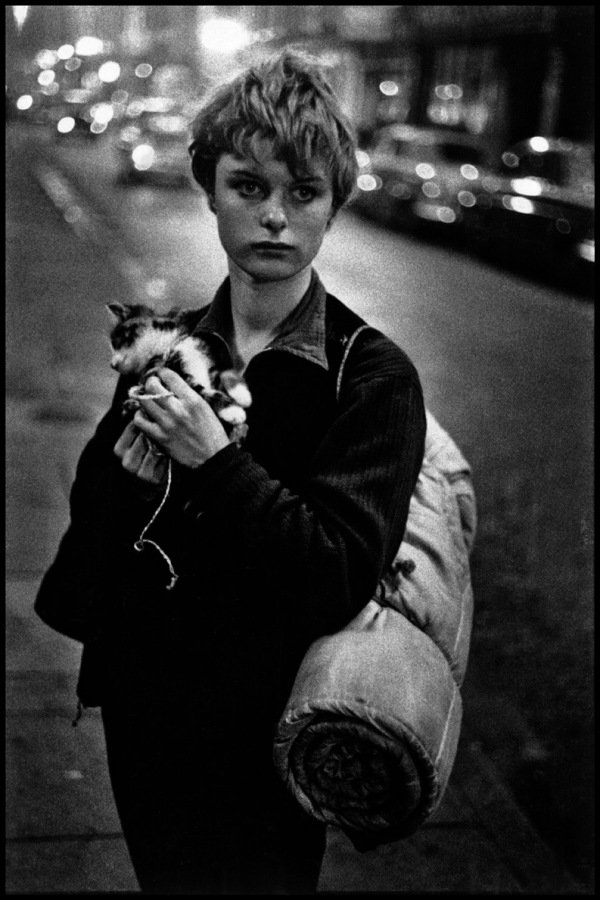 Girl Holding a Kitten, 1960 by Bruce Davidson in England