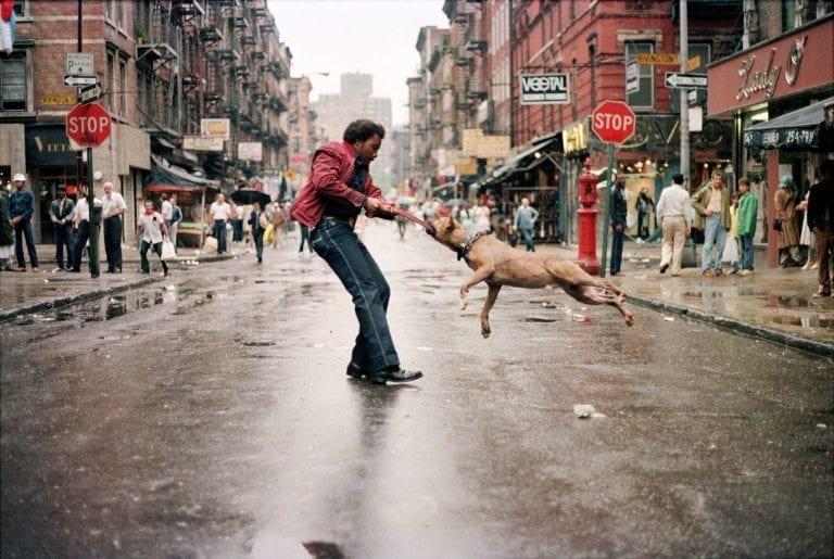 Street Photography, Mensch und Hund, 1980, New York, Jamel Shabazz Cheryl Dunn Everybody Street