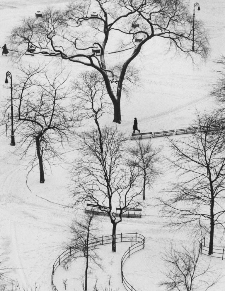 Washington Square, New York, 1954 © Andre Kertesz