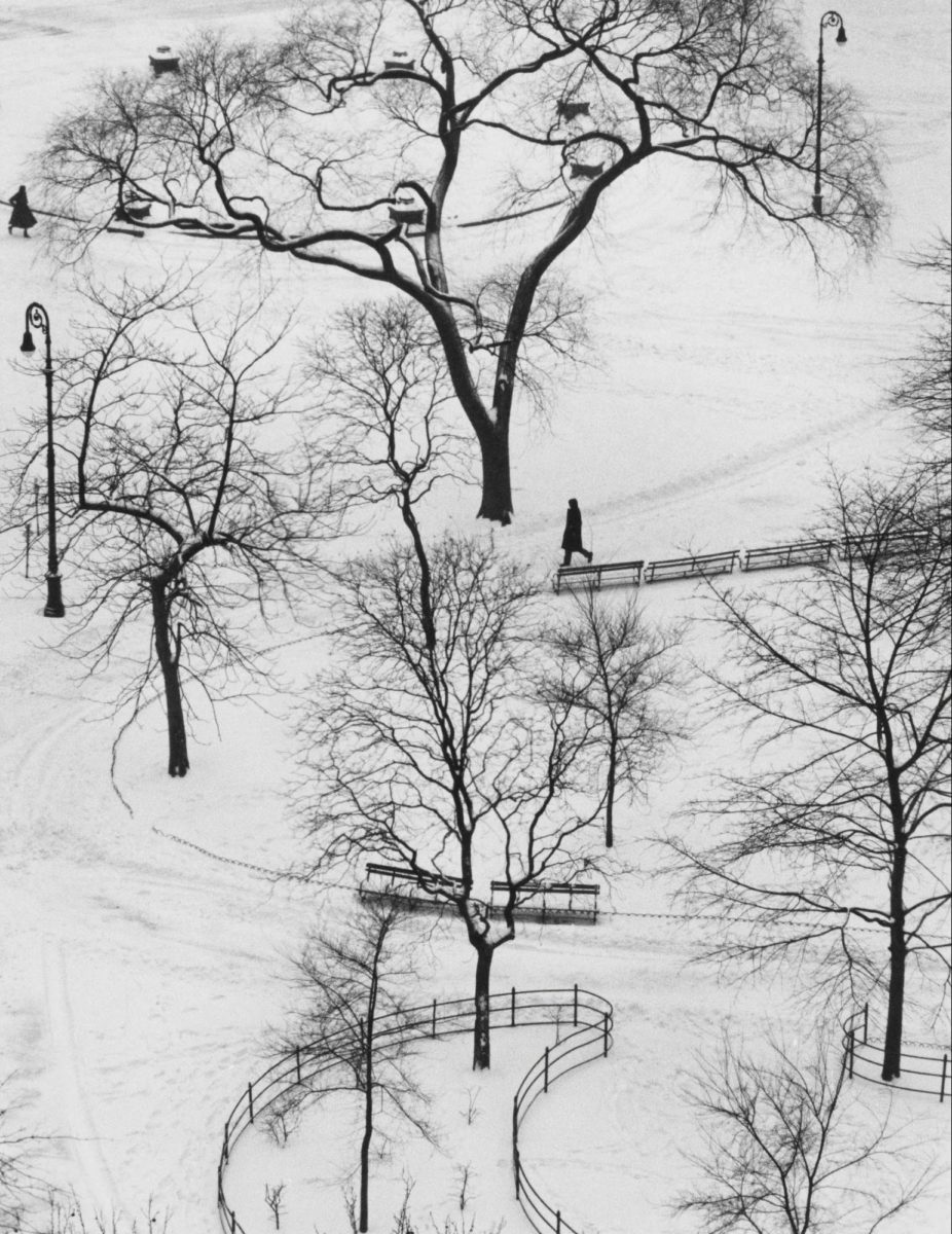 Washington Square, New York, 1954 © Andre Kertesz