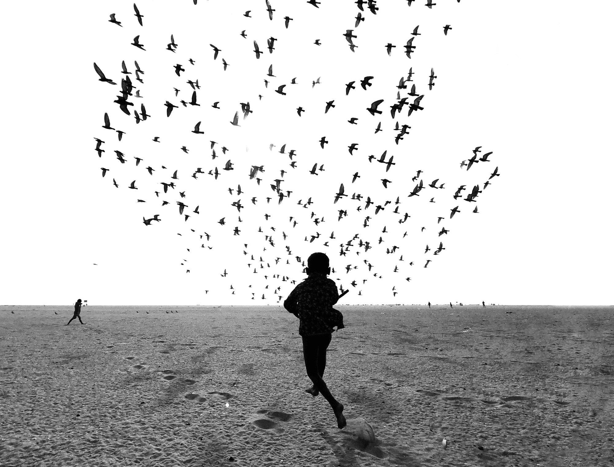 Dimpy Bhalotia的黑白摄影