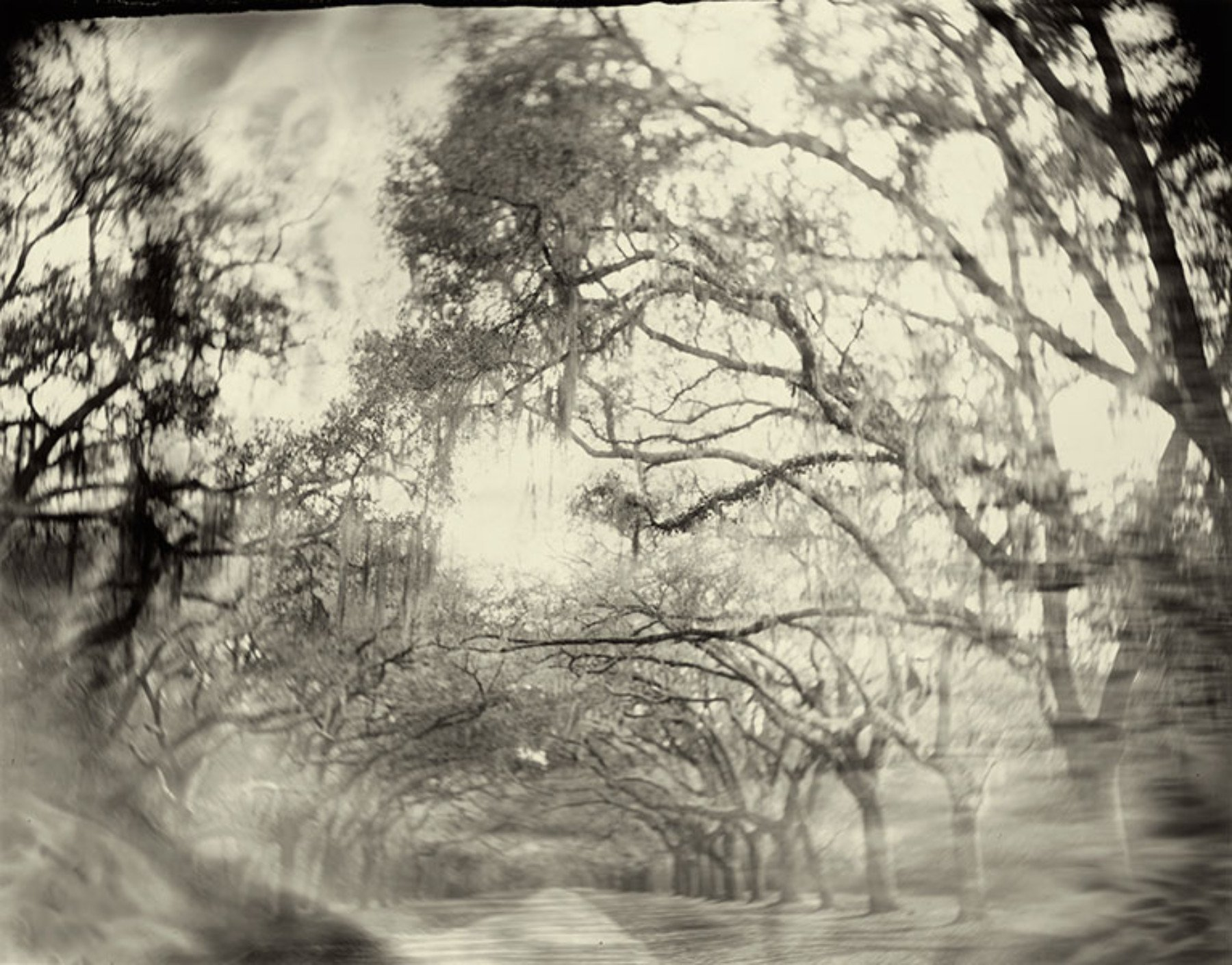 Georgia 01, From Southern Landscapes (1996) © Sally Mann