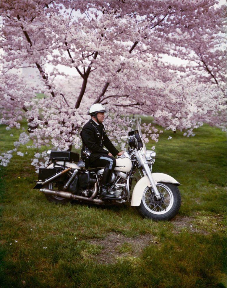 Springtime, Washington, 1965, photographie couleur par Evelyn Hofer