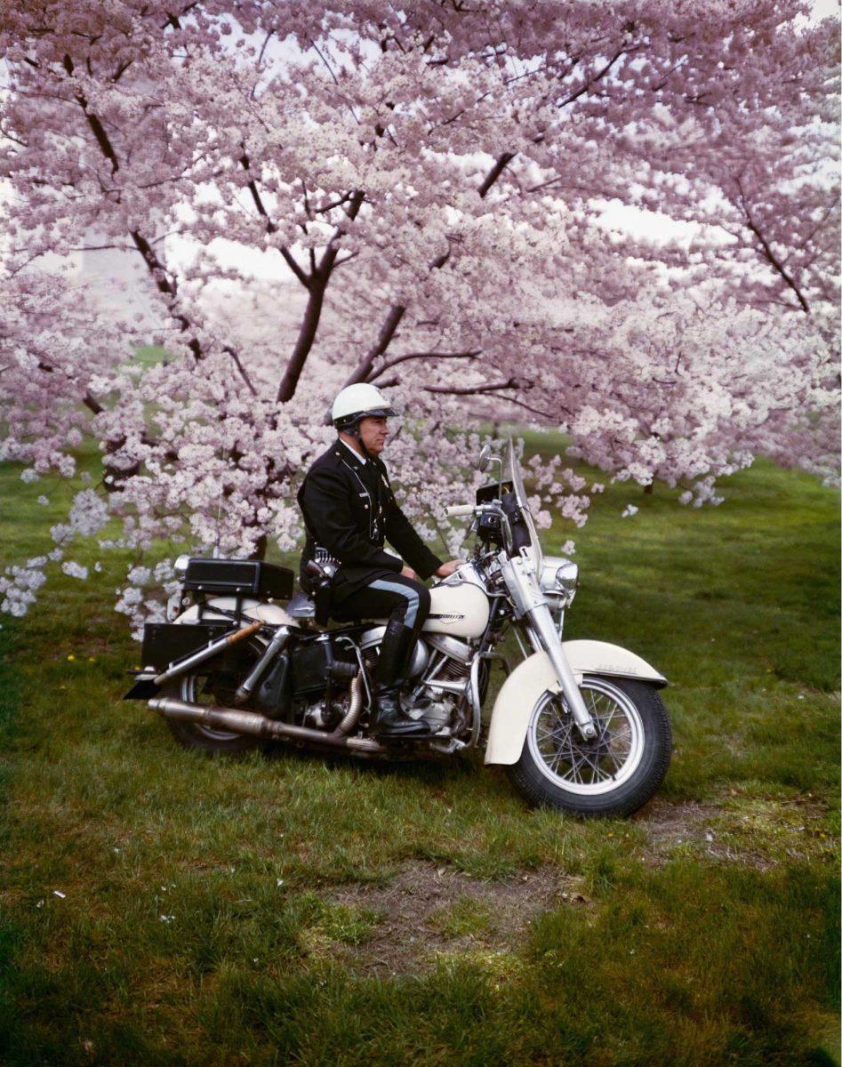 Springtime, Washington, 1965, Color Photography by Evelyn Hofer