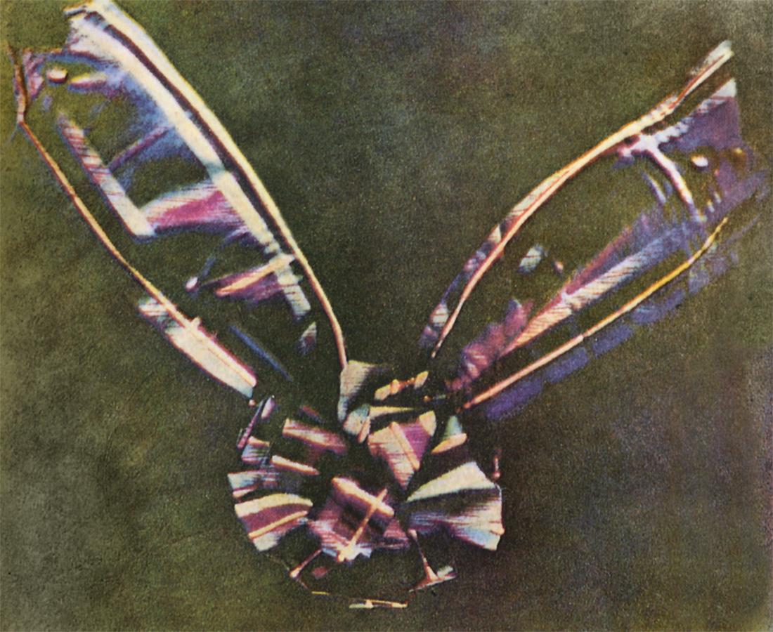 格子呢丝带,1861年,托马斯·萨顿(Thomas Sutton)和詹姆斯·克莱克·麦克斯韦(James Clerk Maxwell)摄影