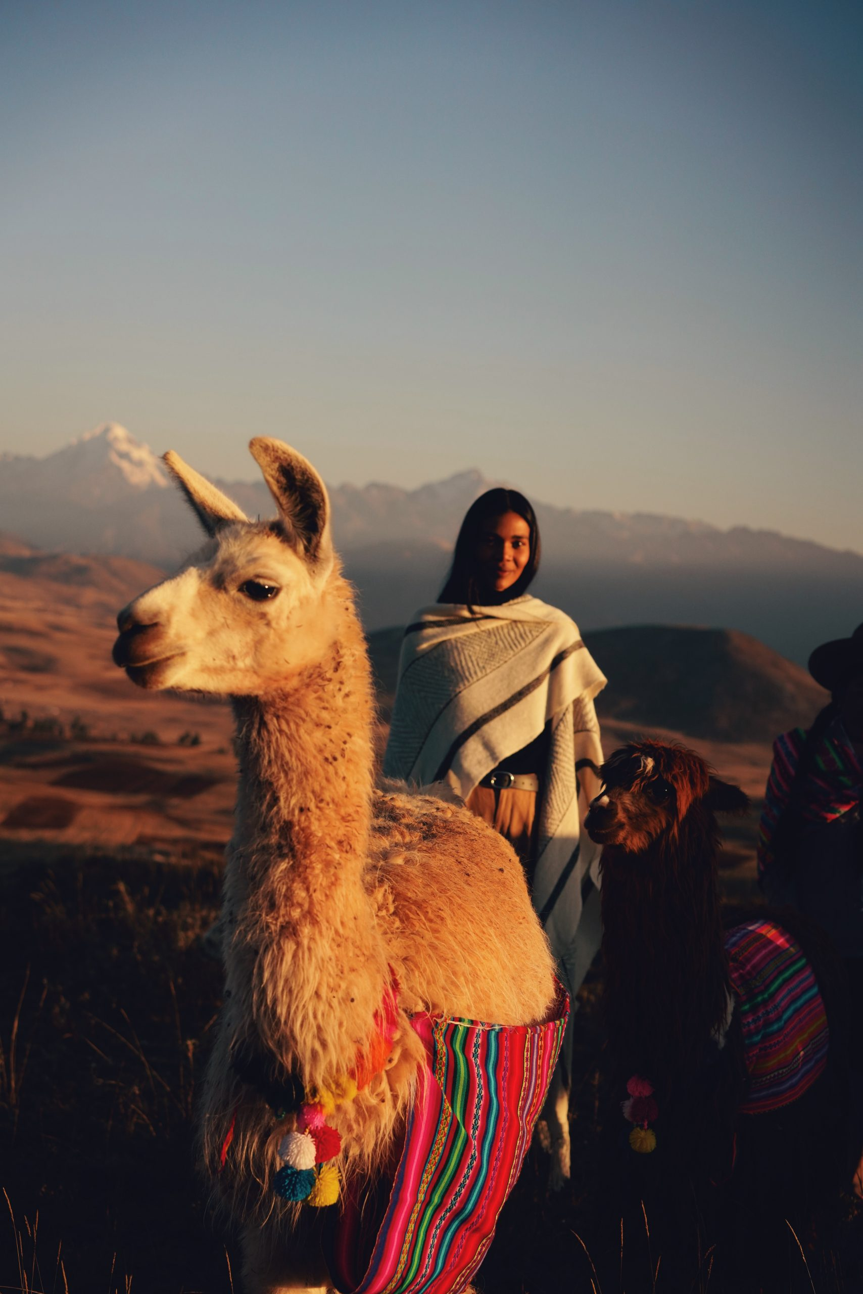 Color travel photography by Pia Riverola, woman riding Lama, Andes, Peru
