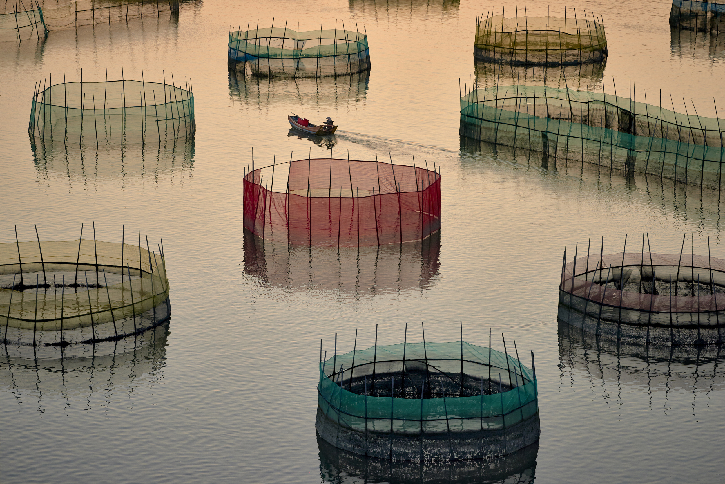 Travel photograph of Fishing nets at Xiapu, China by Niall Chang