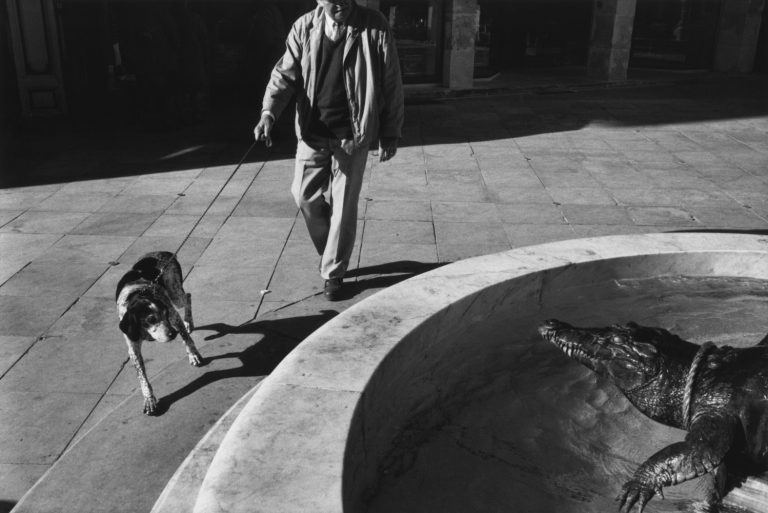Black and white street photography by Richard Kalver a man walking his dog encounter a crocodile in a fountain in Nîmes, South of France.