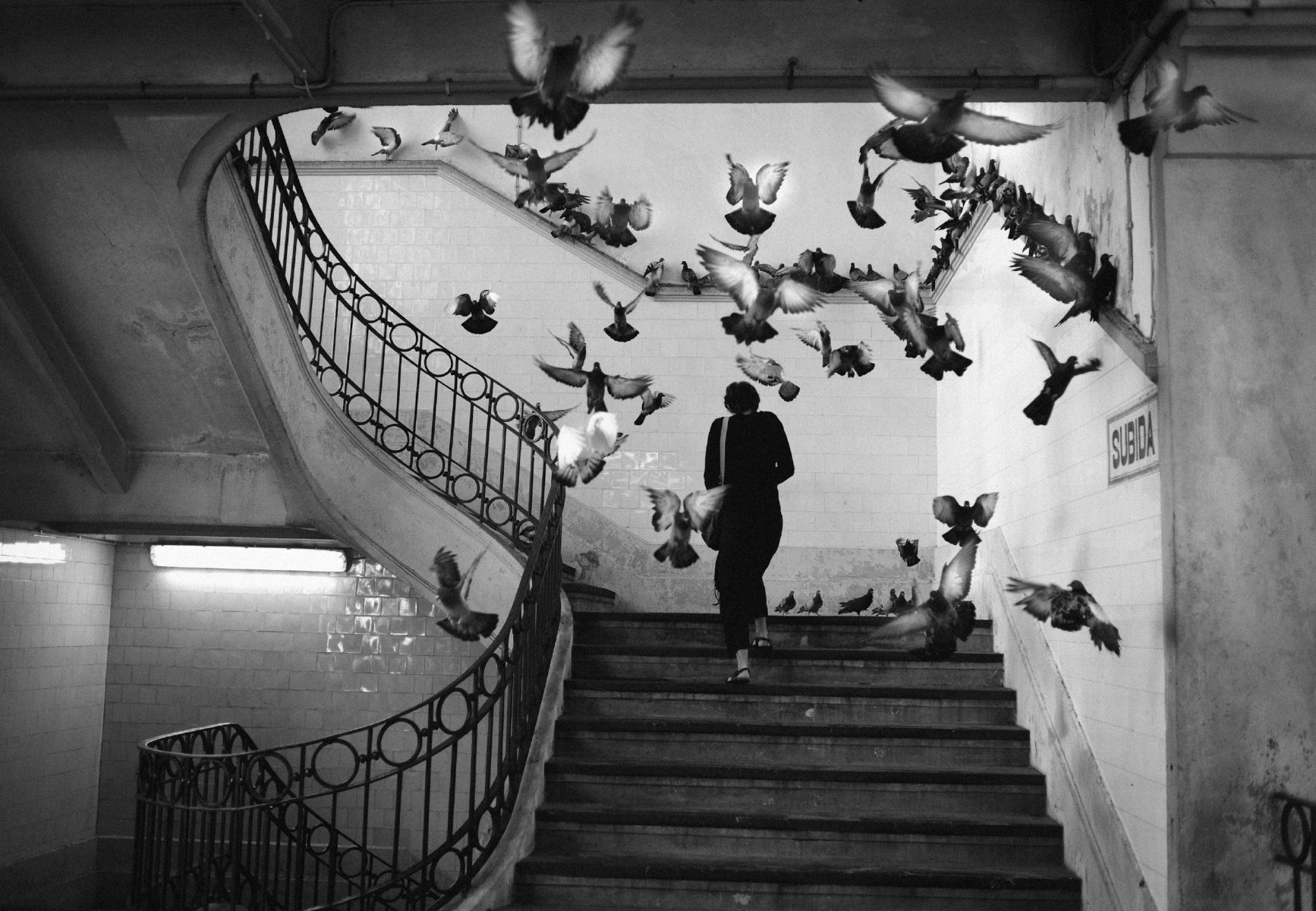 black and white street photograph of woman and pigeons by Rui Palha