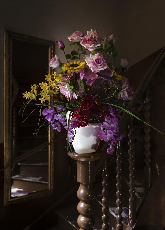 Fotografía en color de Gui Christ, flores, florero