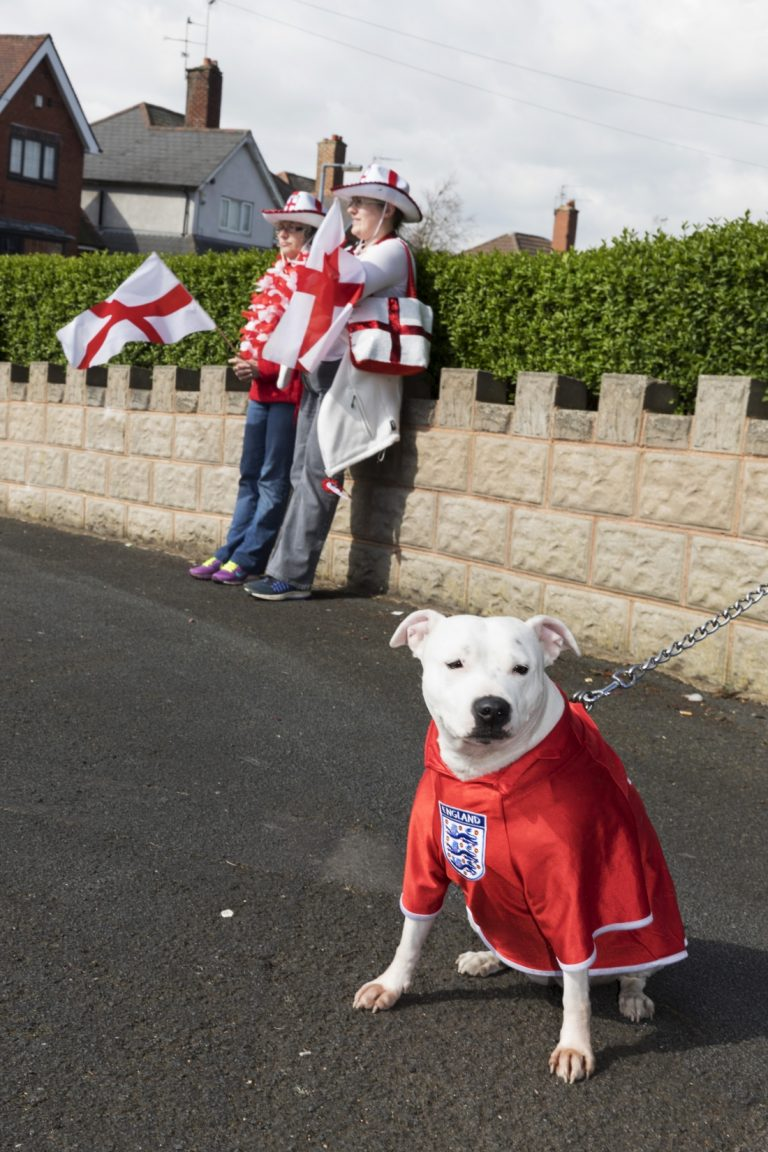 Color photo by Martin Parr, dog in an england football, soccer shirt, West Bromwich, UK, St George's day parade.