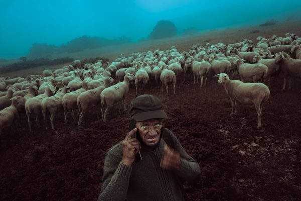 color portrait photograph of a shepherd in Italy - Visual Storytelling Award