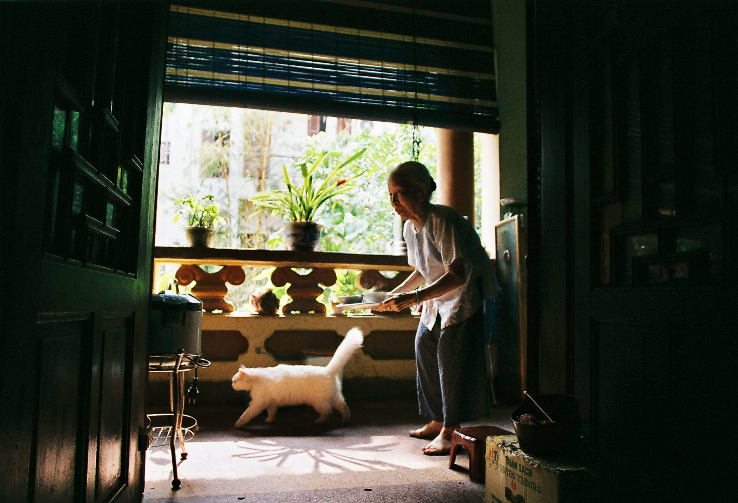 Color photo by Maika Elan from Inside Hanoi. Elderly woman and cat.