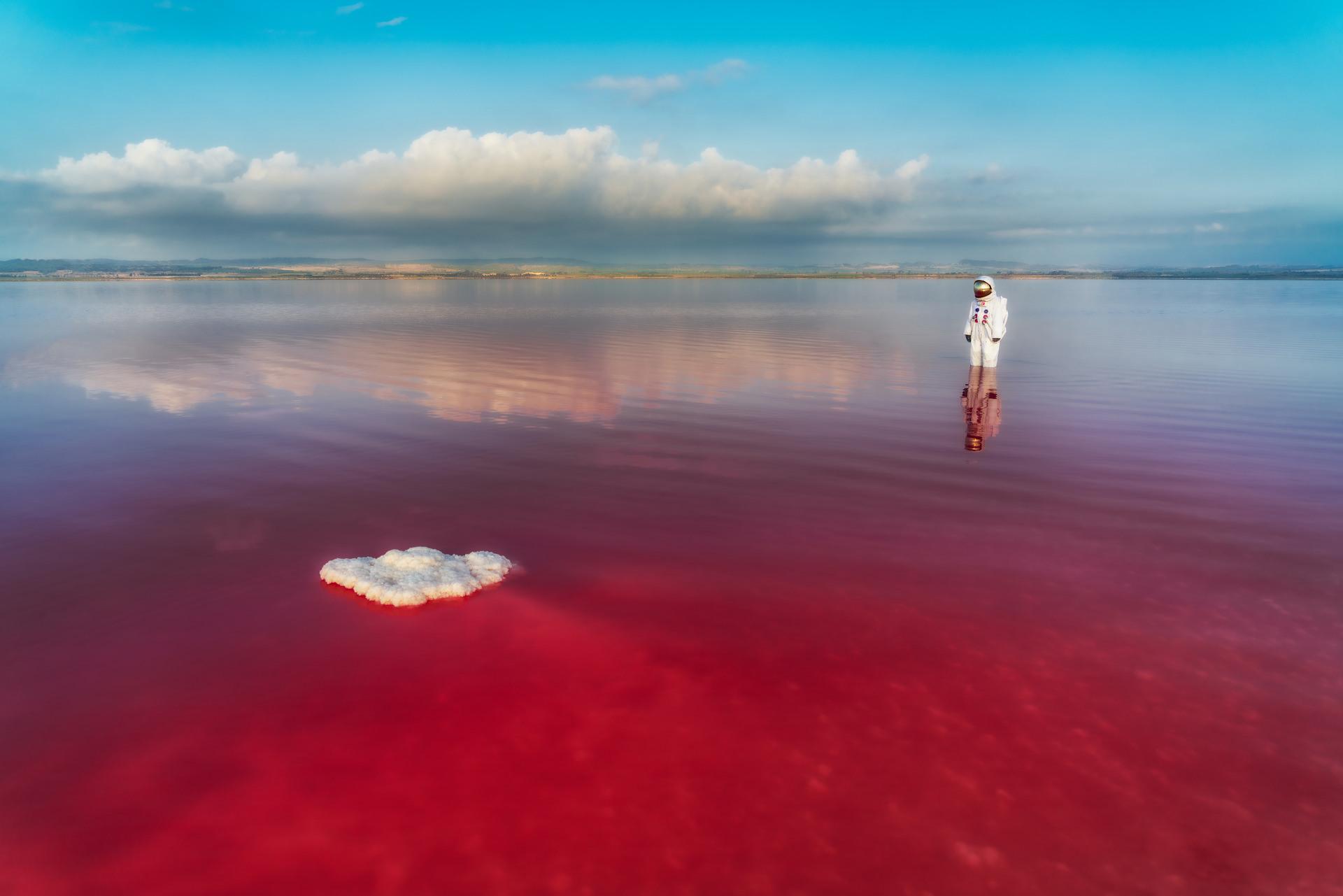 color landscape photograph of an astronaut on pink lake by Jeremy De Backer