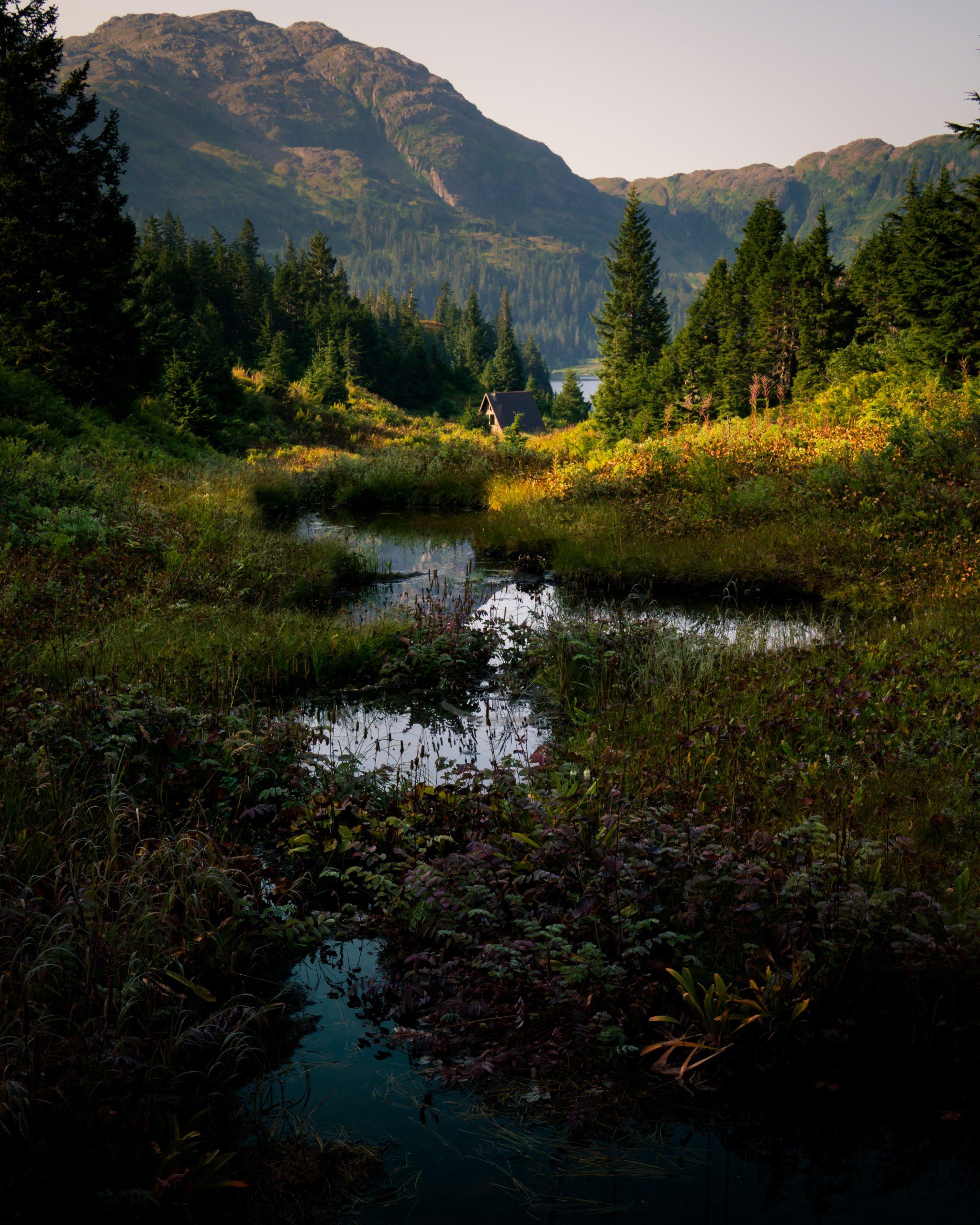 color landscape photograph of Prince William Sound island, Alaska