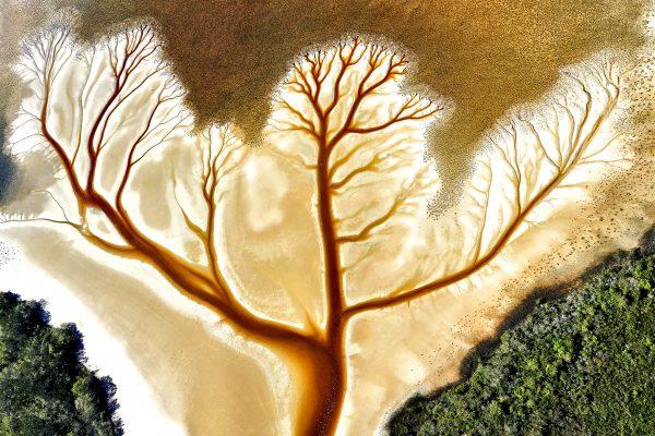Aerial color landscape photograph of Cakora Lake, New South Wales, Australia