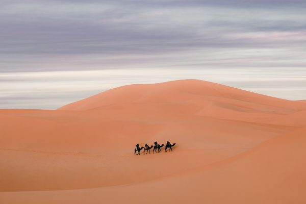 color landscape photograph of a desert and camel ride in Morocco
